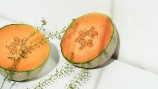 メロンは野菜か果物か【豆知識】